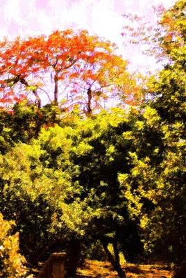Mixed Media - Summer Trees by Florene Welebny