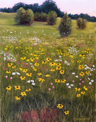 Summer Wildflowers Art Print by Joan Swanson