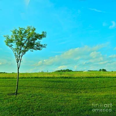Photograph - Summer Wind by LeLa Becker