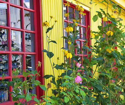 Photograph - Summer Windows by Kathy Bassett