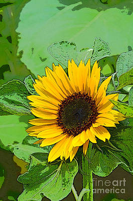 Digital Art - Summer Yellow Sunflower Painting by Eva Kaufman