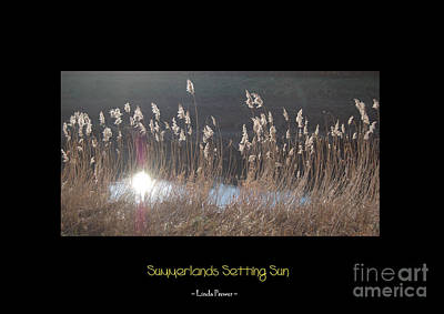 Summerlands Setting Sun Art Print by Linda Prewer