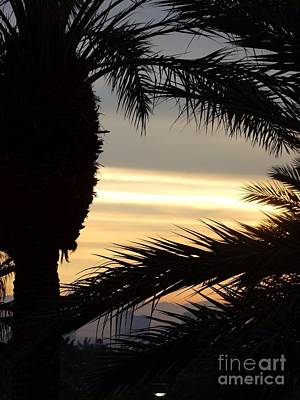 Photograph - Summerlin Sunset by Linda Xydas
