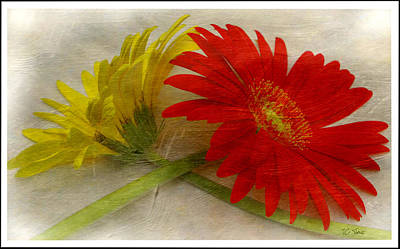 Photograph - Summers Colors  by James C Thomas