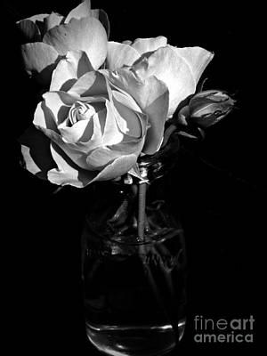 Photograph - Summer's Last Blooms Bw by Chalet Roome-Rigdon