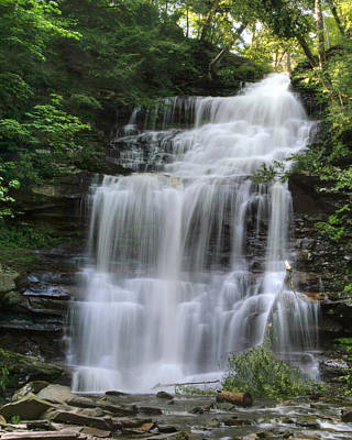 Photograph - Summertime At Ganoga Falls In Rickett's Glen by Gene Walls
