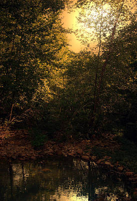 Photograph - Summertime At The Creek by Nina Fosdick