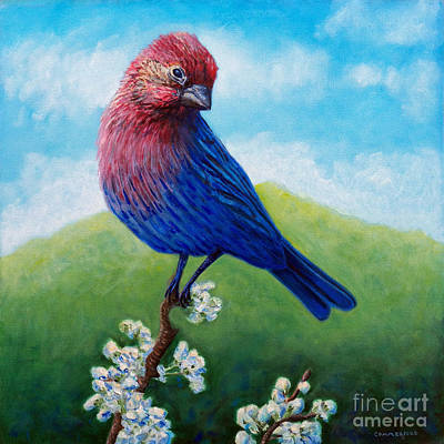 Finch Painting - Summertime by Brian  Commerford