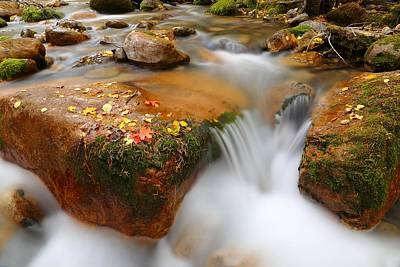 Photograph - Summit Creek Autumn by David Andersen