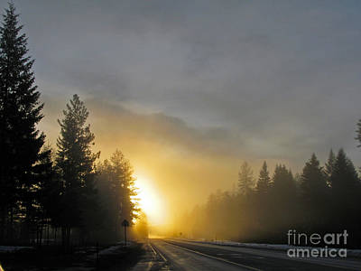 Photograph - Sun And Fog by Cindy Murphy - NightVisions