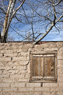 Outdoor Still Life Photograph - Sun-baked by Nikolyn McDonald