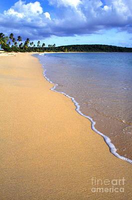 Vieques Photograph - Sun Bay by Thomas R Fletcher