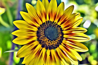 Photograph - Sun Burst  by Spencer Hughes