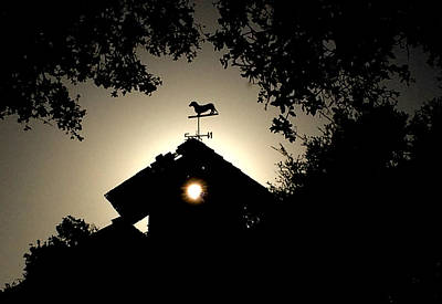 Photograph - Sun Cupola And A Dachshund  by Roger Mullenhour