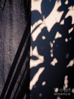 Photograph - Sun Dappled Wall by Silvia Ganora