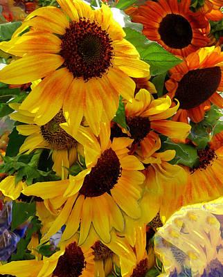 Photograph - Sun Fall by Kathy Bassett