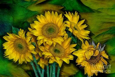 Photograph - Sun Flower Beauties by Shirley Mangini