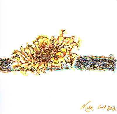Tree Plantation Drawing - Sun Flower by Len YewHeng