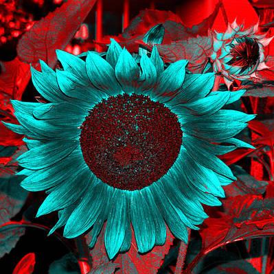 Sun Flower Reverse Art Print