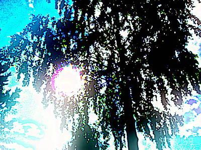 Pyrography - Sun Glare by Pauli Hyvonen