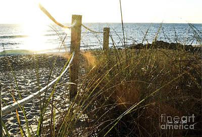 Sun Glared Grassy Beach Posts Art Print