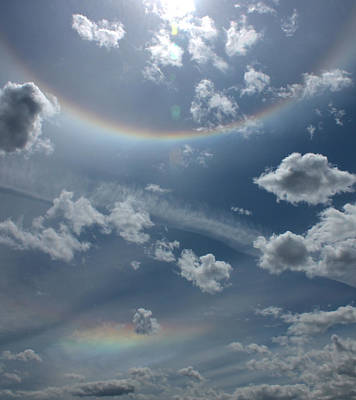 Photograph - Sun Halo by Cathie Douglas