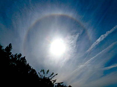 Photograph - Sun Halo by Jean Wright
