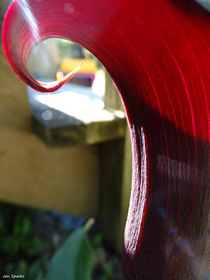 Photograph - Sun Kissed Calla by Jen Sparks