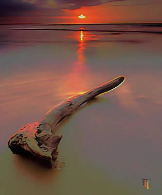Sun Kissed Driftwood Original by  Fli Art