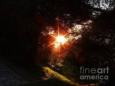 Photograph - Sun Light -1 by Katerina Kostaki