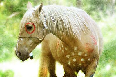 Glass Eyed Pony Photograph - Sun Lit by Lyndsey Warren