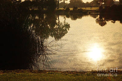 Stainglass Photograph - Sun On The Water by Cassandra Buckley