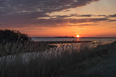 Sunset Photograph - Sun Over Reeds by Photographic Arts And Design Studio