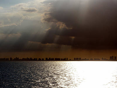 Irish Leprechauns - Sun Rays over Miami by Josephine W