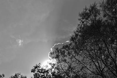 Photograph - Sun Rays by Thomas  MacPherson Jr
