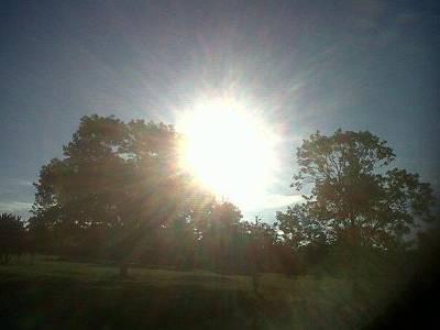 Sun Rise Original