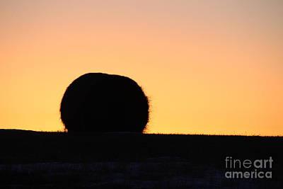 Photograph - Sun Rise Silhouette by Ann E Robson