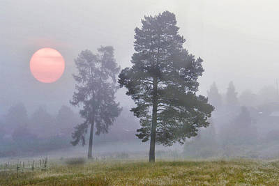 Sun Rise Art Print by Vladimir Kholostykh