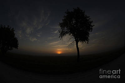 Photograph - Sun Rising On The Farm by David Bearden