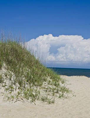 Photograph - Sun Sand Dune Obx by Heather Grow