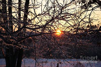 Photograph - Sun Set In Ice by Julie Clements