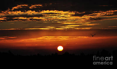 Photograph - Sun Set In Rainy Days  by Manjot Singh Sachdeva