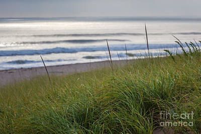 Photograph - Sun Surf by Susan Cole Kelly