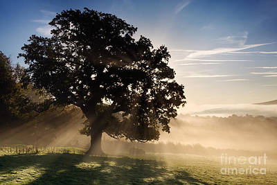 Misty Dawn Print by Rod McLean