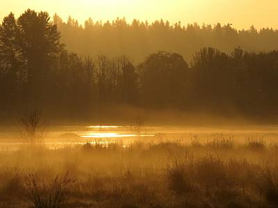 Sun Up At The Refuge Art Print