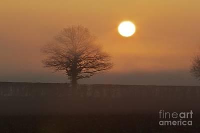 Art Print featuring the photograph Sun Up by Gary Bridger
