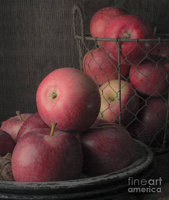 Food And Beverage Royalty-Free and Rights-Managed Images - Sun Warmed Apples Still Life Standard Sizes by Edward Fielding
