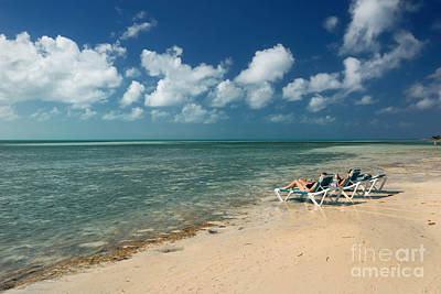 Sunbathers On The Beach Print by Amy Cicconi