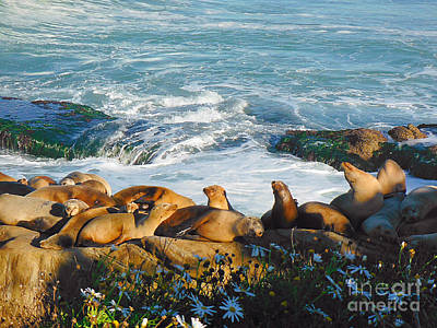 Sea Lions Photograph - Sunbathing Sea Lions by April Antonia