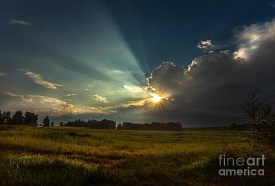 Art Print featuring the photograph Sunbeam by Rose-Maries Pictures